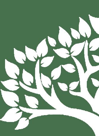 pattern-img